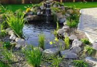 Как сделать декоративный садовый пруд