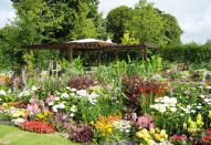 Проектирование и оформление садового участка